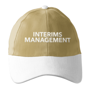 interims-management-binzcom